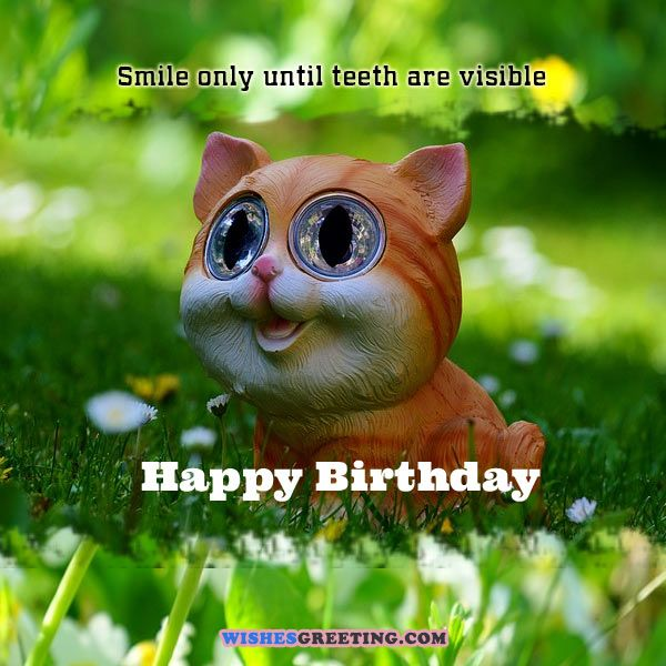 funny-birthday-wishes2