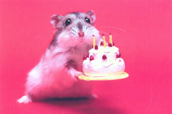 Happy-Birthday-14