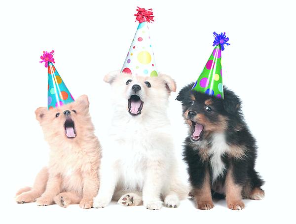 happy-21st-birthday06