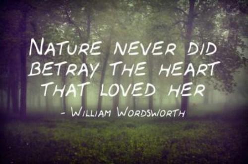 Nature_Quotes5