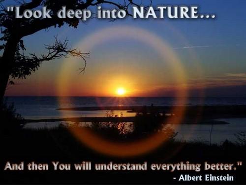 Nature_Quotes6
