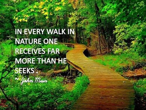 Nature_Quotes7