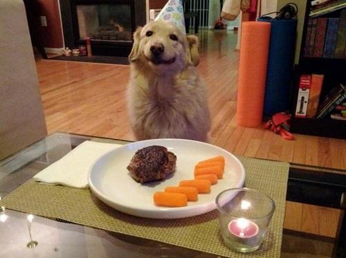 funny-happy-birthday-wishes0107