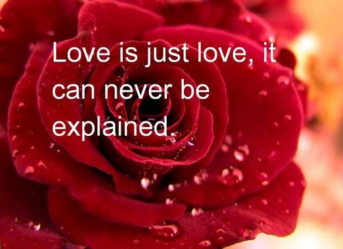 Valentines_Day_Quotes2