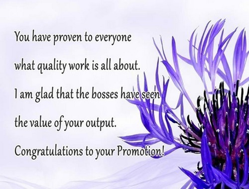 congratulations on promotion messages for co-worker