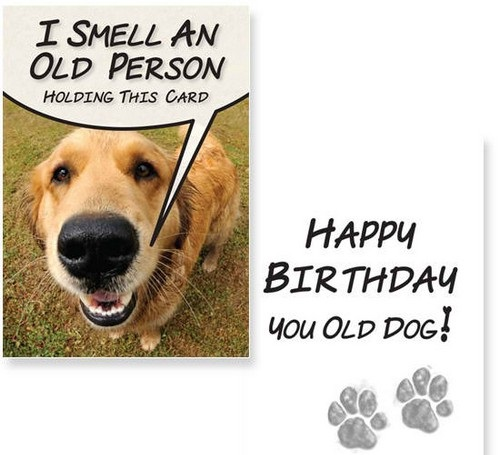 birthday_wishes_for_a_dog_lover5