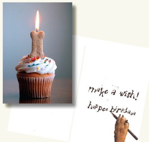 birthday_wishes_for_a_dog_lover7