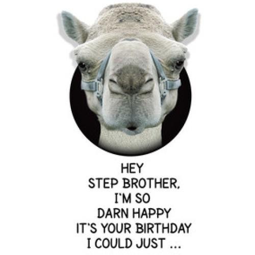 happy_birthday_stepbrother6
