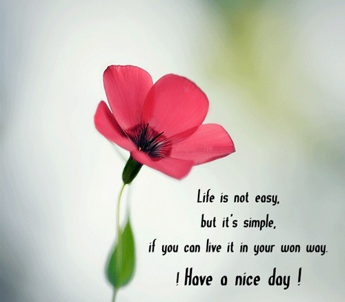 have_a_nice_day_quotes7