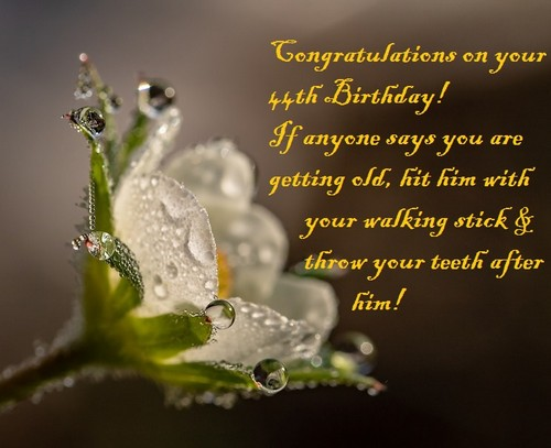 happy_44th_birthday_wishes7