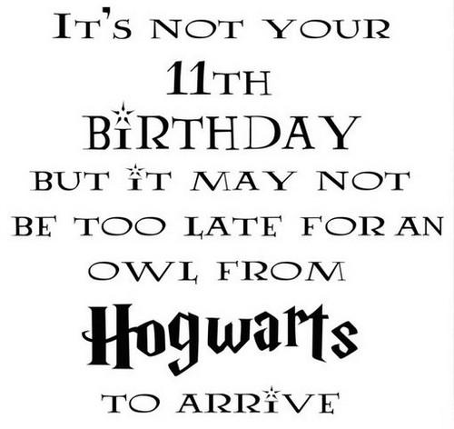 happy_birthday_harry_potter1