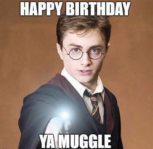 happy_birthday_harry_potter4
